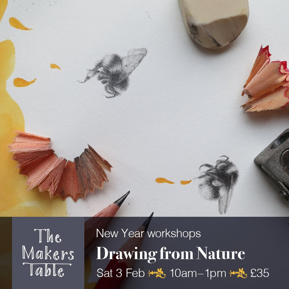 drawing from nature - the makers table